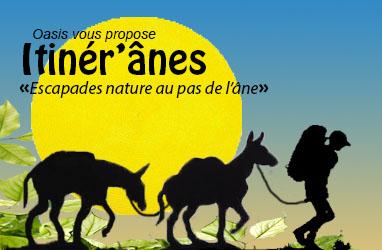 Itinér'ânes (Oasis)